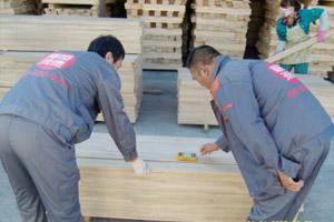 木地板湿度检测设备