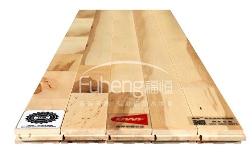 B级枫木运动地板