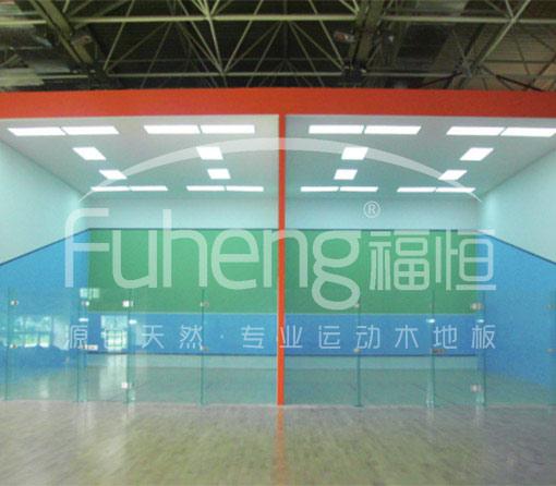 中国残奥中心壁球馆工程