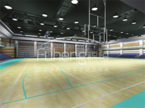中石化工程公司职工活动中心篮球馆